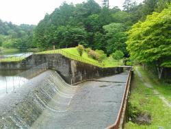 Lake Dando