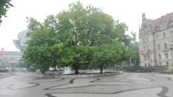 Trammplatz