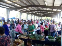 Charlotte Regional Farmer's Market