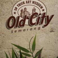 Old City 3D Trick Art Museum