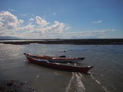 Bush and Boat