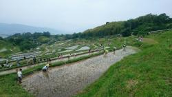 Inakura Rice Terraces