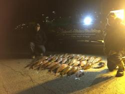 Nocturnal Addiction Bowfishing