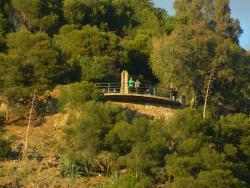 Mirador del Gibralfaro