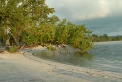Jamaica Grande Beach
