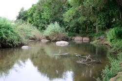 Tranquil setting on the banks of the Sabi