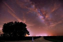 Kissimmee Prairie Preserve State Park