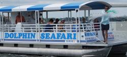 Dolphin Seafari