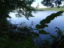 St Croix National Scenic Riverway