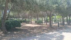Parque del Centro de Poblenou