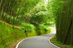 Xiaobantian Mengzongzhu Green Trail