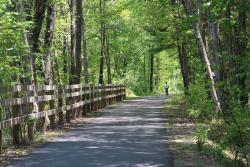 Bruce Freeman Rail Trail