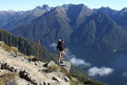 New Zealand Walks