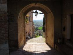 Tours Around Tuscany