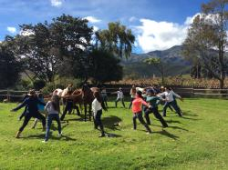 Horse & Yoga retreat in May