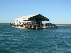 Blue Lagoon Pearl Shop