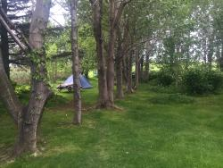Wonderful spot to camp