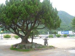Wakashio Unit Monument