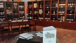 Wine Shop Geografico