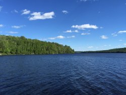 Beautiful lake & cottage with excellent service