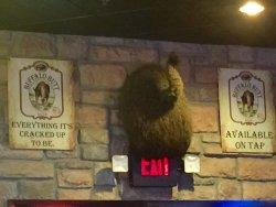Buffalo's Southwest Cafe