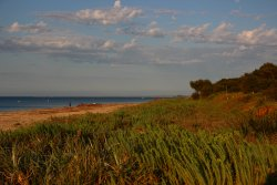 Beach frront