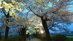 Tenshochi Park