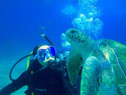 Wet Monster Dive Center