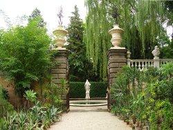 帕多瓦植物園
