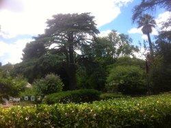 Jardin du Las - Parc Burnet