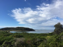Broulee Island Walk