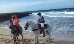 I-land Aruba Tours