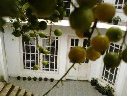 Niwasa House