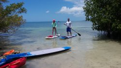 Beach Bum Paddle Sports