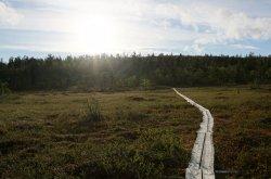 The Pahtajarvi Trail
