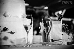 wedding use exclusive