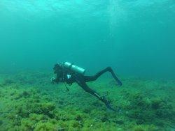 Zeus Dive Center