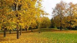 Park Orekhovaya Roshha