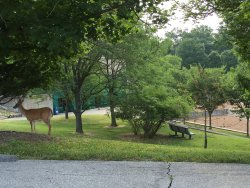 Edgar M. Queeny County Park