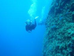 Alonissos Blue Dream Dive Center