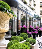 L'Orangerie - Four Seasons Hotel George V