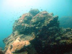 Arrecifes de Tuxpan