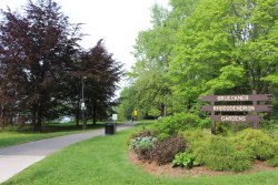 Brueckner Rhododendron Gardens