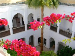 View from roof top terrace into courtyard