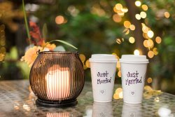 The Coffee Tree Roasters