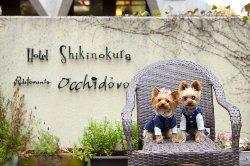 Hotel Shikinokura