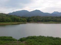 Palasari Dams