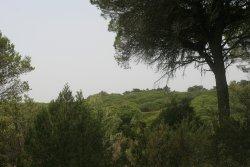Parque Natural Las Brenas