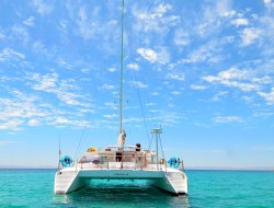 Island Cat Private Charters &  Excursions