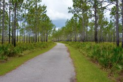 Jay B. Starkey Wilderness Park